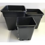 Wilma Replacement Pots